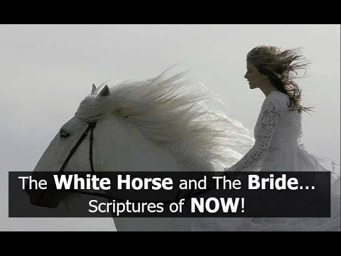 The White Horse and The Bride... Scriptures of NOW!