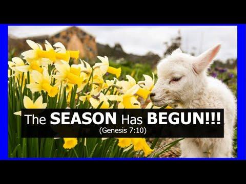 The SEASON Has BEGUN!!! (Genesis 7:10)