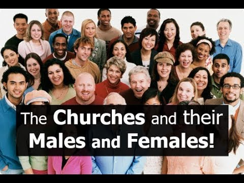 The Churches and their Males and Females?