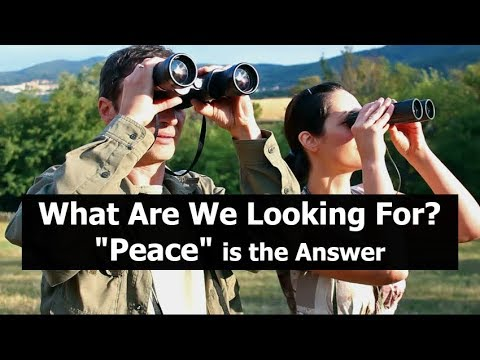 What Are We Looking For? PEACE is the Answer