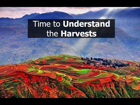 Time to Understand the Harvests