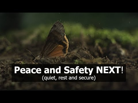 Peace and Safety NEXT! (quiet, rest and secure)